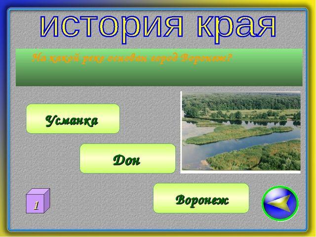 На какой реке основан город Воронеж? Воронеж Дон Усманка 1