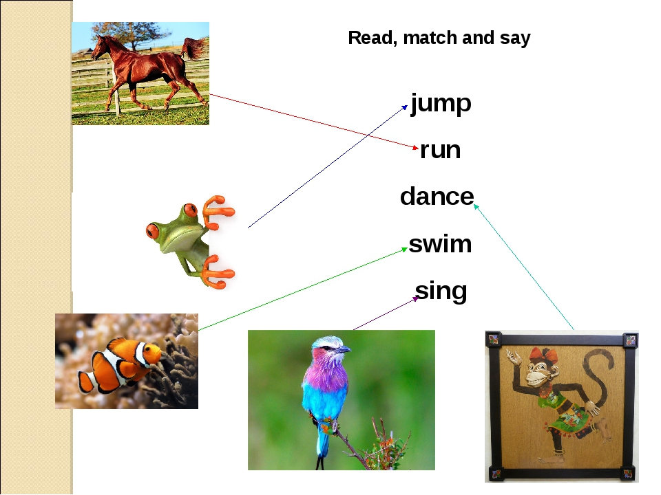 Read, match and say jump run dance swim sing