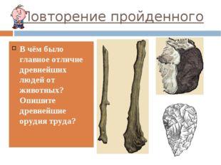 Повторение пройденного В чём было главное отличие древнейших людей от животны