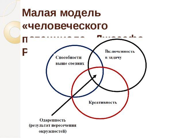Малая модель «человеческого потенциала» Джозефа Рензулли