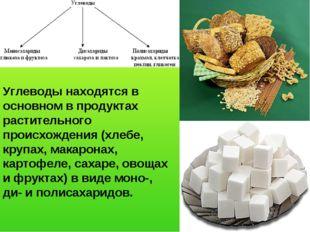 Углеводы находятся в основном в продуктах растительного происхождения (хлебе,
