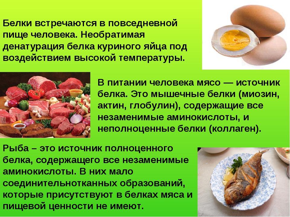 Белки встречаются в повседневной пище человека. Необратимая денатурация белка...