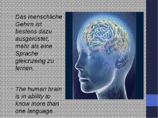 Das menschliche Gehirn ist bestens dazu ausgerüstet, mehr als eine Sprache g