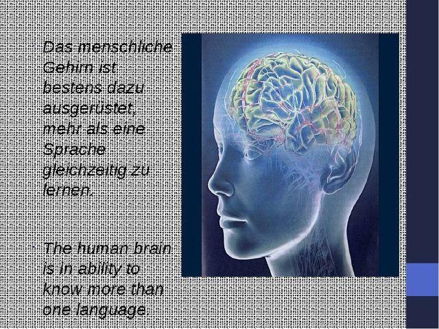 Das menschliche Gehirn ist bestens dazu ausgerüstet, mehr als eine Sprache g...