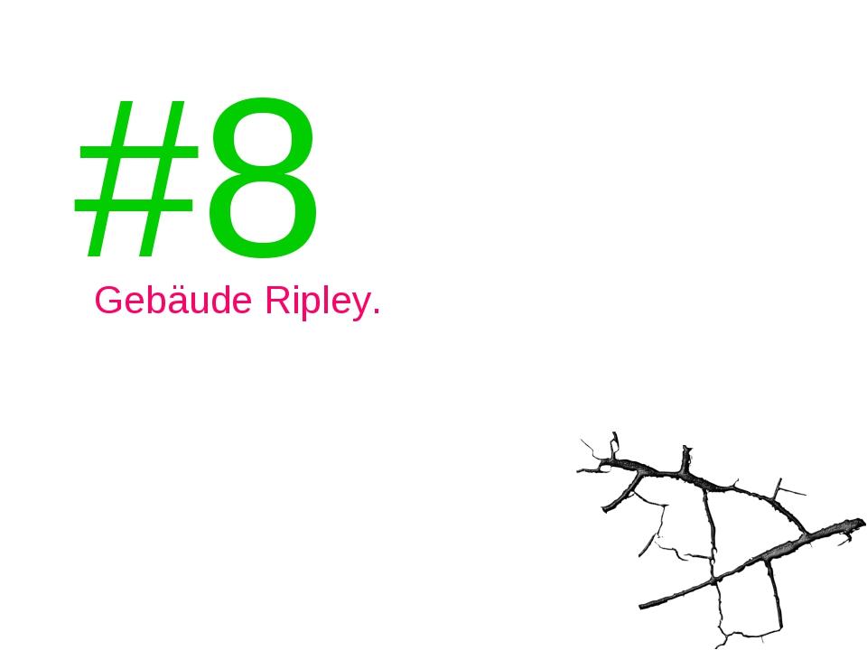 #8 Gebäude Ripley.