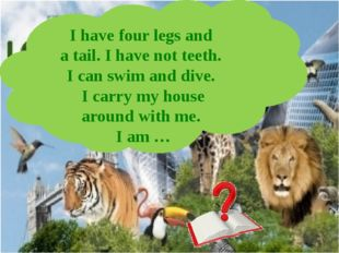 I have four legs and a tail. I have not teeth. I can swim and dive. I carry m