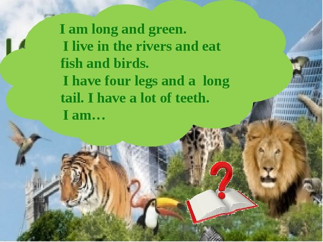 I am long and green. I live in the rivers and eat fish and birds. I have fou...