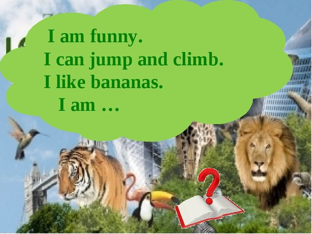 I am funny. I can jump and climb. I like bananas. I am …