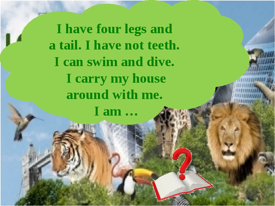 I have four legs and a tail. I have not teeth. I can swim and dive. I carry m...