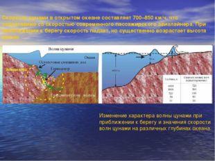 Скорость цунами в открытом океане составляет 700–850 км/ч, что сопоставимо со