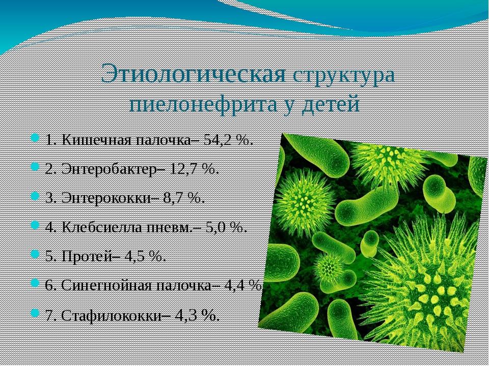 Этиологическая структура пиелонефрита у детей 1. Кишечная палочка– 54,2 %. 2...