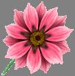 hello_html_m27338f3b.png
