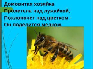 Домовитая хозяйка Пролетела над лужайкой, Похлопочет над цветком - Он поделит