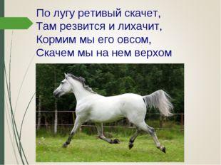 По лугу ретивый скачет, Там резвится и лихачит, Кормим мы его овсом, Скачем м