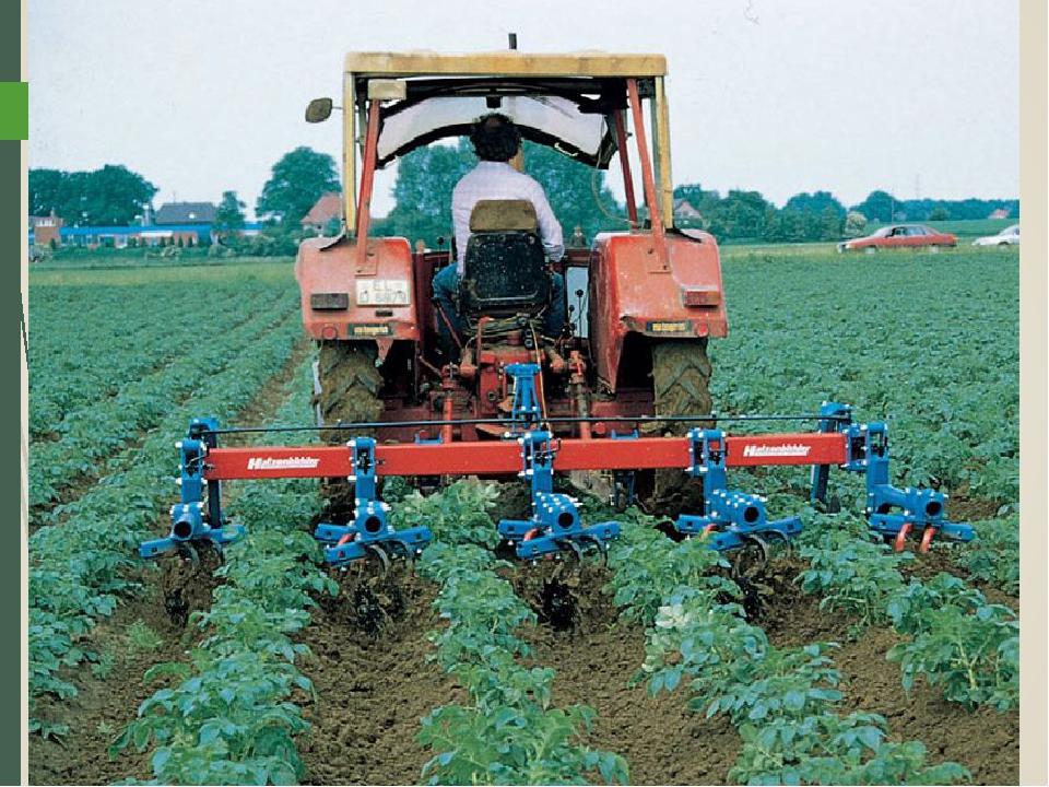 Vendita di terreni agricoli a Catania