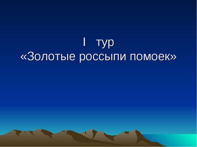 I тур «Золотые россыпи помоек»