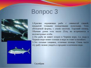 Вопрос 3 1.Красиво окрашенная рыба с синеватой спиной, покрытой темными попер