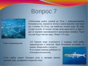 Вопрос 7 Хамса черноморская 1.Небольшая рыбка длиной до 15см, с неправдоподоб
