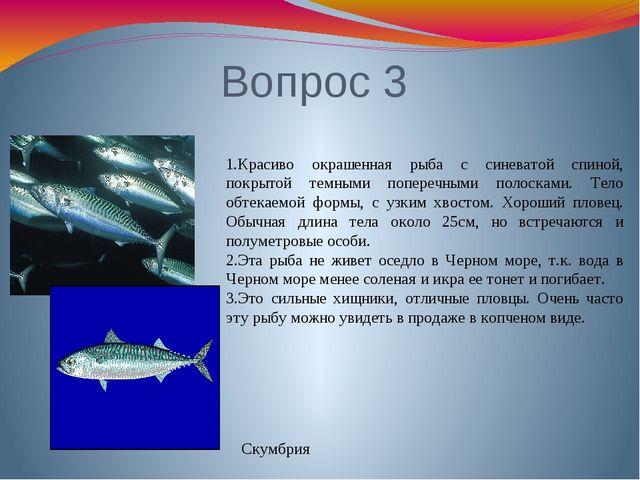 Вопрос 3 1.Красиво окрашенная рыба с синеватой спиной, покрытой темными попер...