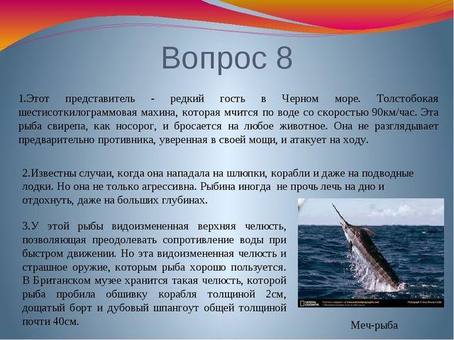Вопрос 8 Меч-рыба 1.Этот представитель - редкий гость в Черном море. Толстобо...
