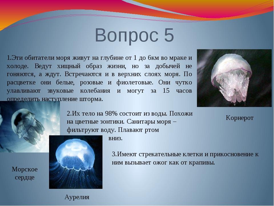 Вопрос 5 Морское сердце Аурелия Корнерот 1.Эти обитатели моря живут на глубин...