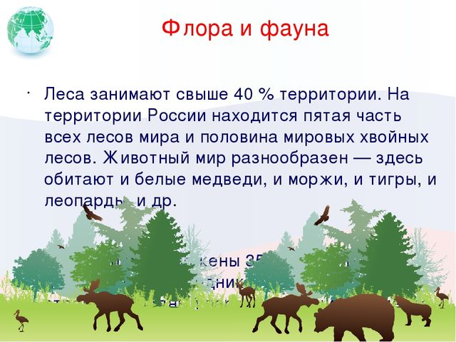 Флора и фауна Леса занимают свыше 40 % территории. На территории России наход...