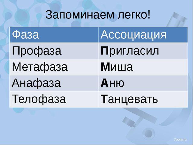 Запоминаем легко! Фаза Ассоциация Профаза Пригласил Метафаза Миша Анафаза Аню...