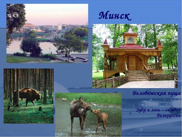 Минск Беловежская пуща Зубр и лось – символ Белоруссии