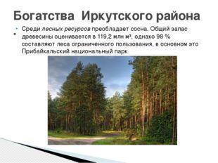 Средилесных ресурсовпреобладаетсосна. Общий запас древесины оценивается в