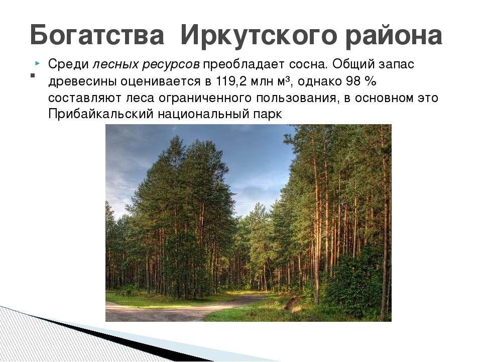 Средилесных ресурсовпреобладаетсосна. Общий запас древесины оценивается в...
