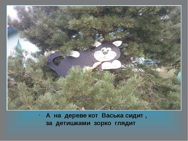 А на дереве кот Васька сидит , за детишками зорко глядит