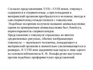Согласно представлениямXVII—XVIIIвеков, гомункул содержится всперматозоиде