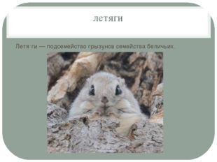 летяги Летя́ги — подсемейство грызунов семейства беличьих.