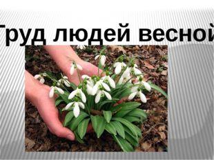 Труд людей весной