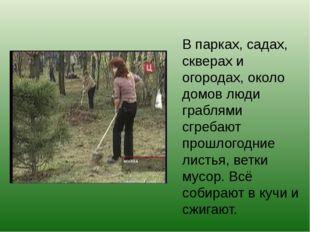 В парках, садах, скверах и огородах, около домов люди граблями сгребают прошл