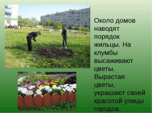 Около домов наводят порядок жильцы. На клумбы высаживают цветы. Вырастая цвет