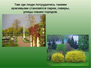 Там где люди потрудились такими красивыми становятся парки, скверы, улицы наш