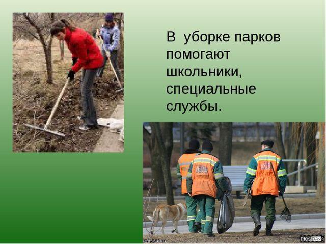 В уборке парков помогают школьники, специальные службы.