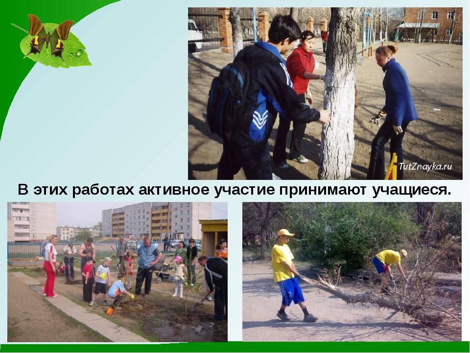 В этих работах активное участие принимают учащиеся.