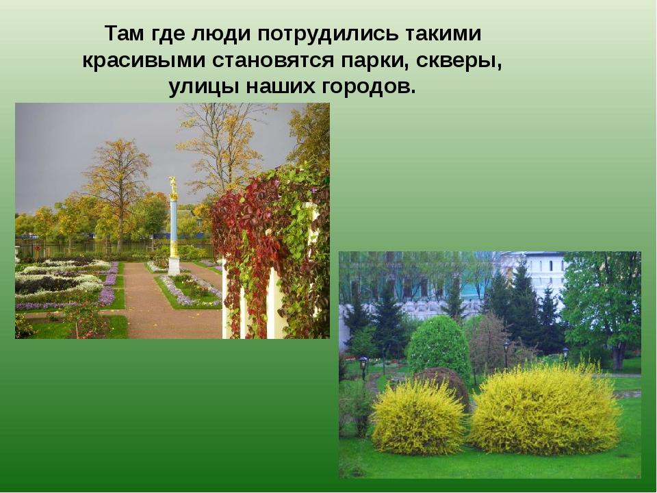 Там где люди потрудились такими красивыми становятся парки, скверы, улицы наш...