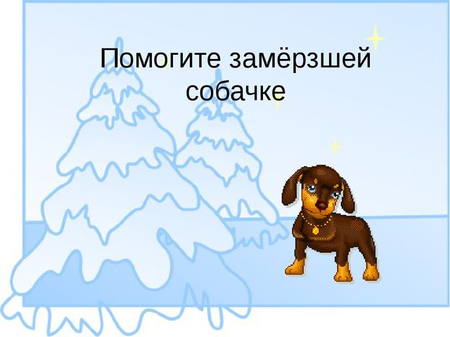 Помогите замёрзшей собачке