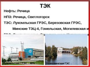 ТЭК Нефть: Речица НПЗ: Речица, Светлогорск ТЭС: Лукомльская ГРЭС, Березовская