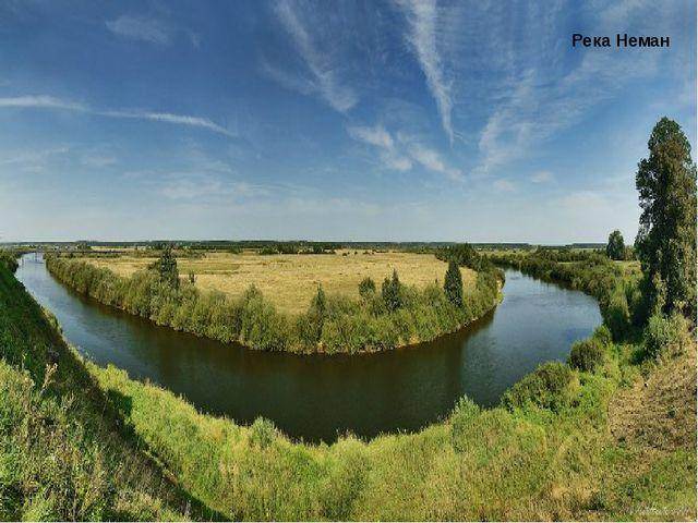 Полесье Озеро Нарочь Беловежская пуща Река Неман Полезныеископаемые Калийные...