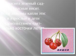 Покраснел зеленый сад- Капли красные висят. Всем знакомы капли эти: Их и взро