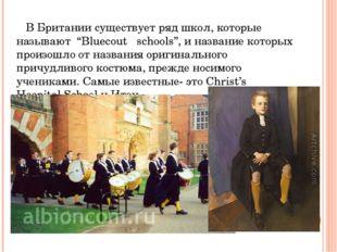 """В Британии существует ряд школ, которые называют """"Bluecout schools"""", и назва"""