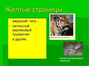Желтые страницы амурский тигр , пятнистый карликовый тушканчик и другие. Пятн