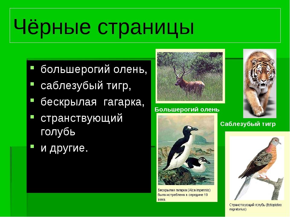 Чёрные страницы большерогий олень, саблезубый тигр, бескрылая гагарка, странс...