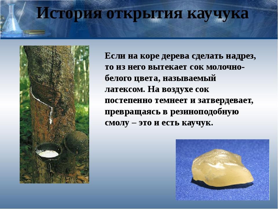 История открытия каучука Если на коре дерева сделать надрез, то из него вытек...