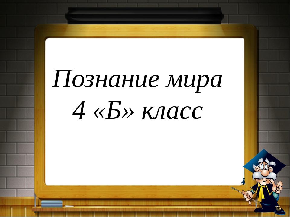 Познание мира 4 «Б» класс