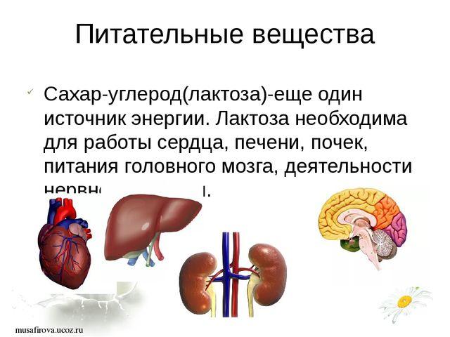 musafirova.ucoz.ru Питательные вещества Сахар-углерод(лактоза)-еще один исто...